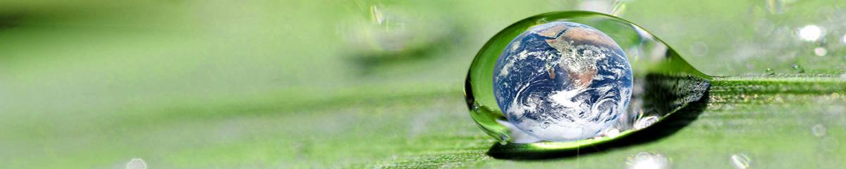 Water Efficiency Rating Score (WERS)